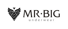MR BIG logo